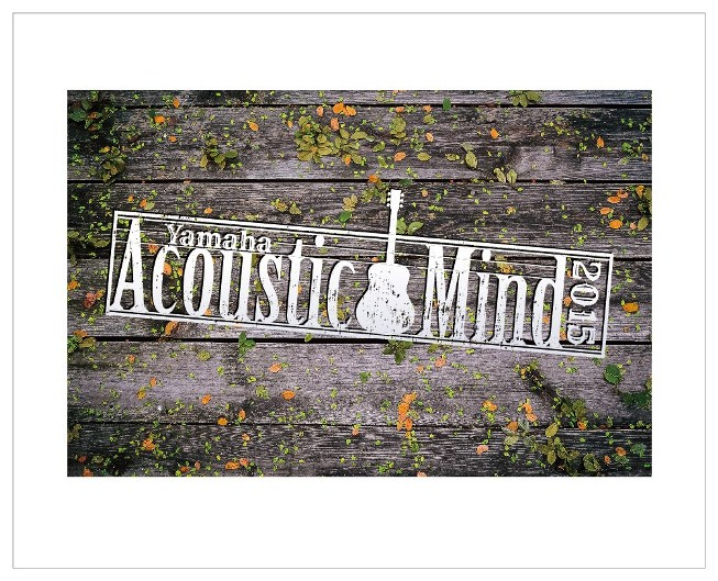 Yamaha Acoustic Mind 2015