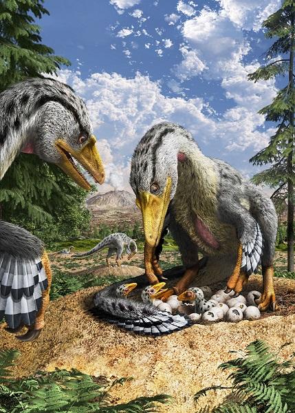 恐竜の卵2017-2