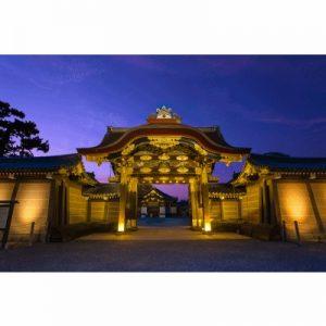二条城×ネイキッド 夏季特別ライトアップ2020[京都]