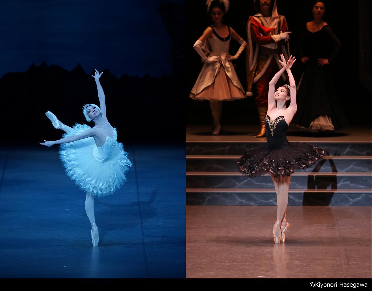 東京バレエ団 ブルメイステル版「白鳥の湖」全4幕